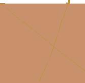 comp6-home-icon1